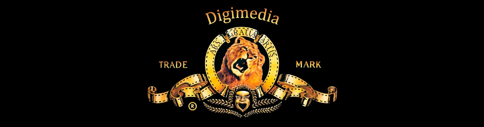 digislide-02